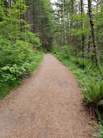 First Section Near Trailhead