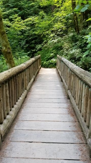 Bridge at Rodney Falls