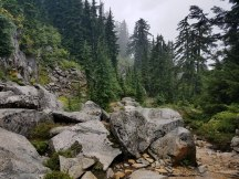 Couldn't find a picture of the view from Pilchuck, but trust me, it was foggy