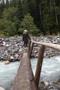 Carter Falls Bridge